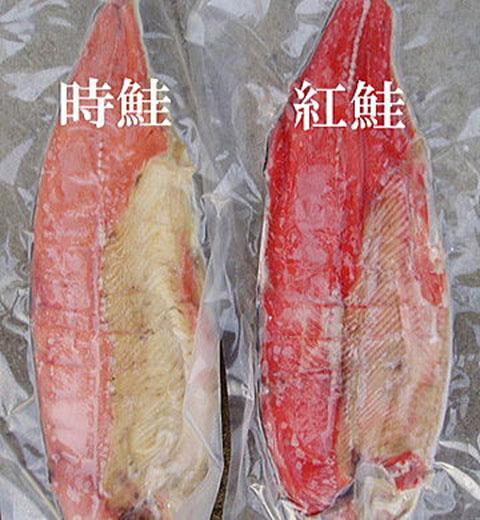 「時鮭」・「紅鮭」どちらも格別の味わい!